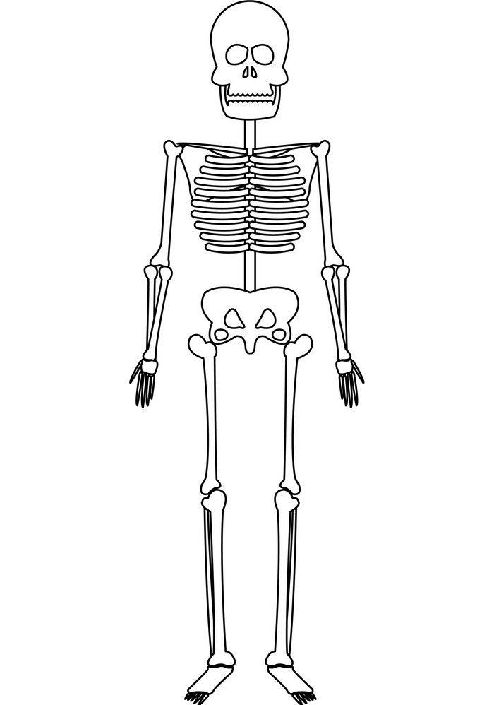 Skeleton clipart 10