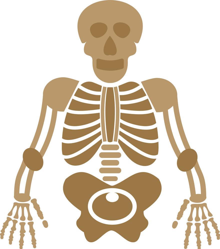 Skeleton clipart 4