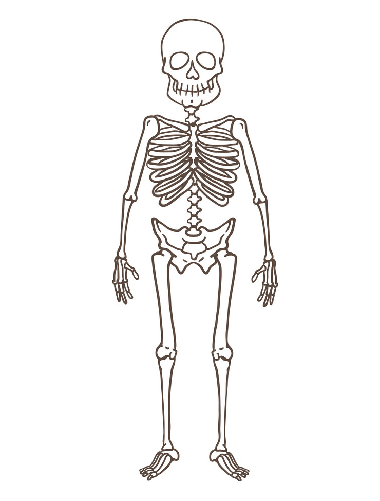 Skeleton clipart 9