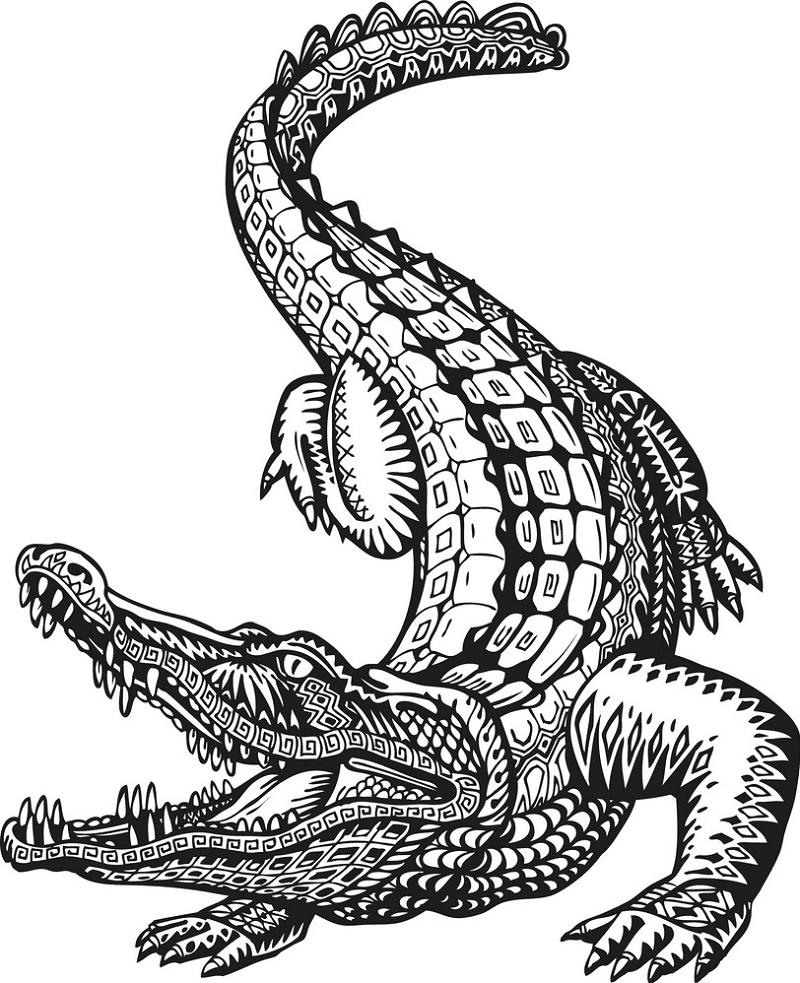 Alligator Clipart Black and White 4