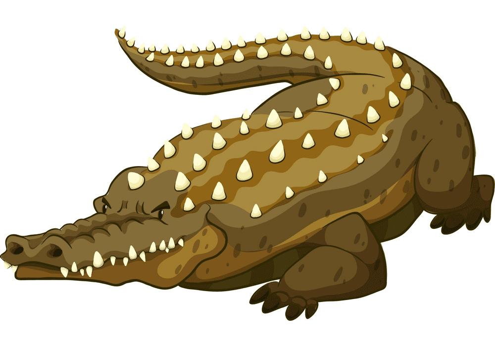 Alligator clipart 2