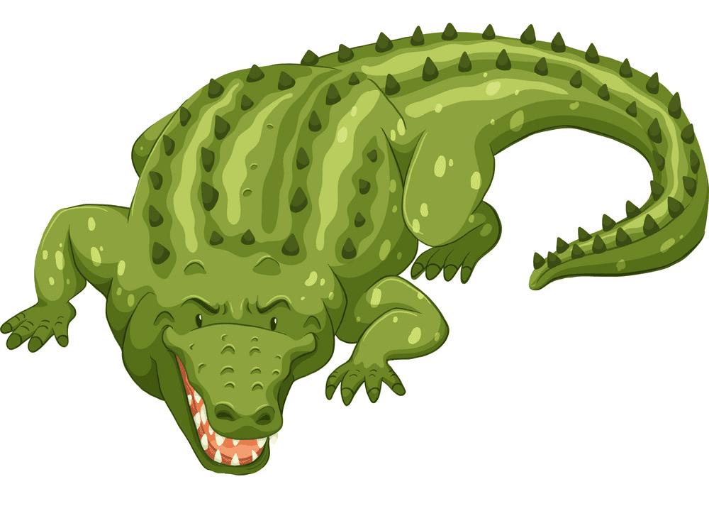 Alligator clipart 4