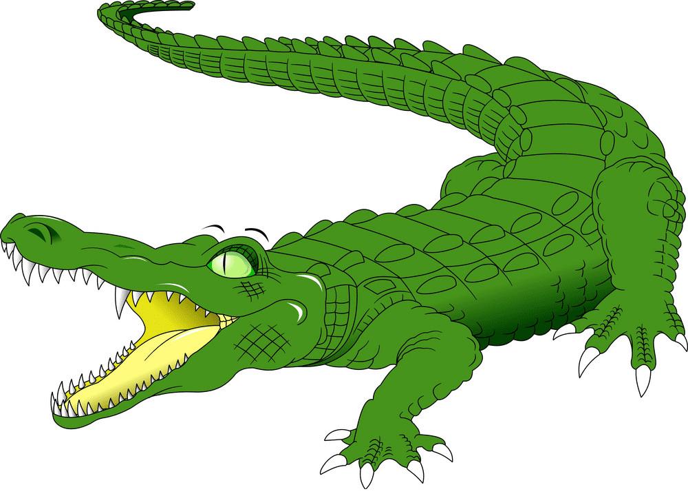 Alligator clipart 5
