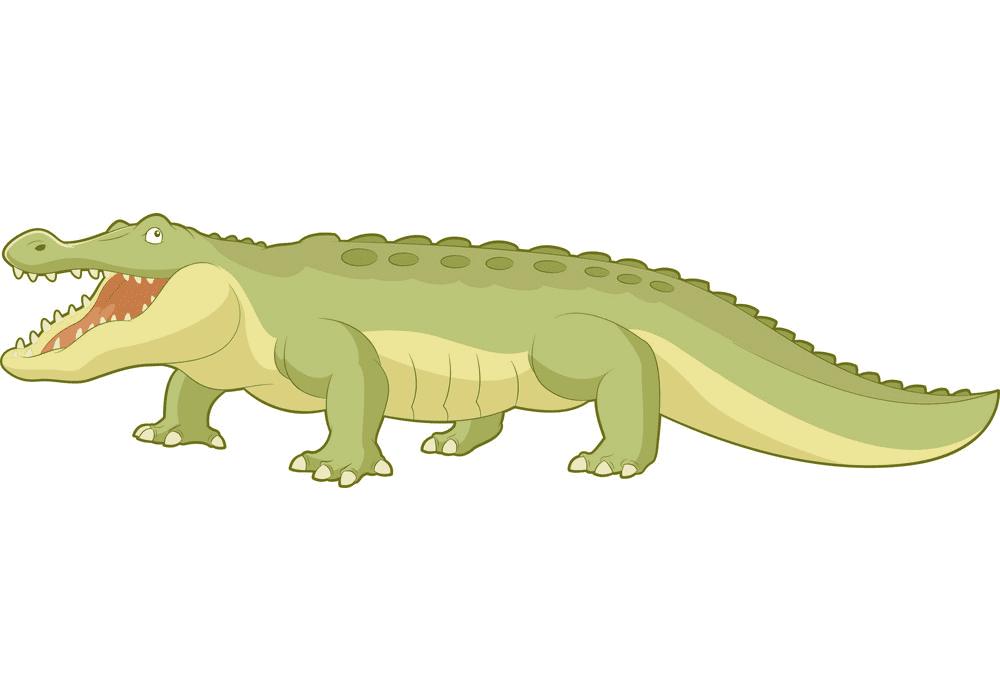 Alligator clipart 6