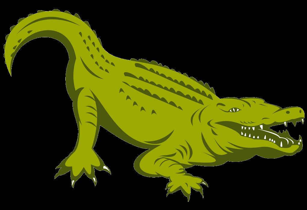 Alligator clipart transparent 1