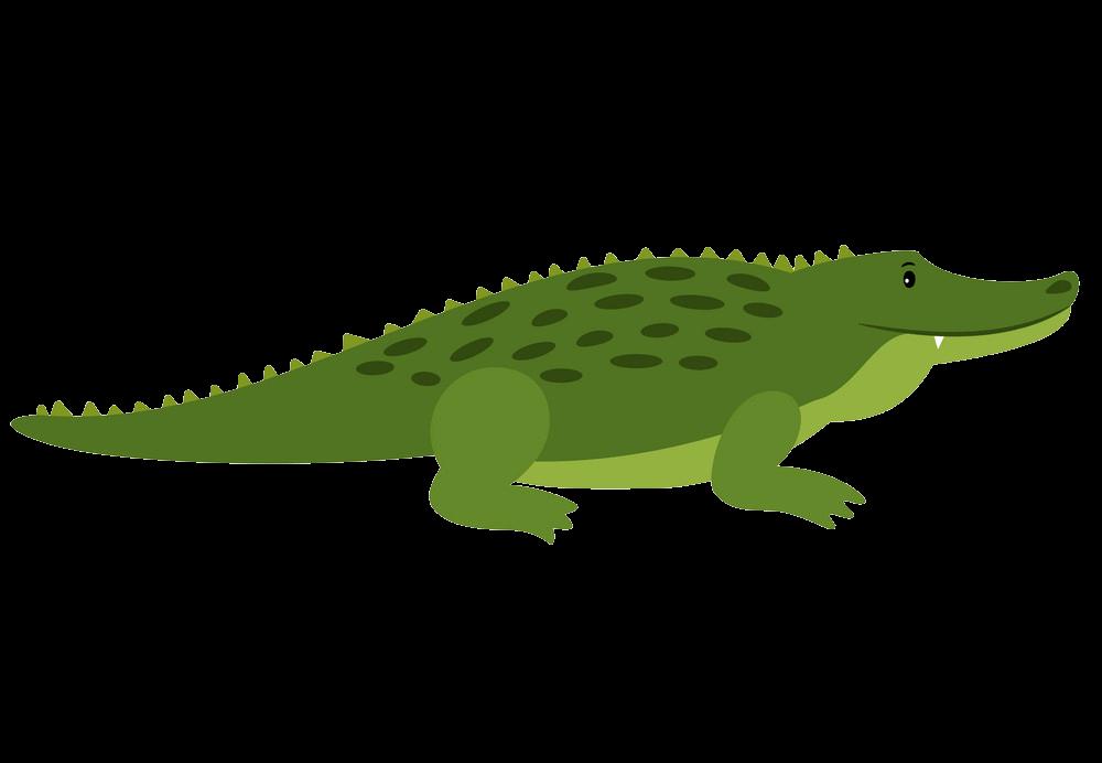 Alligator clipart transparent 2