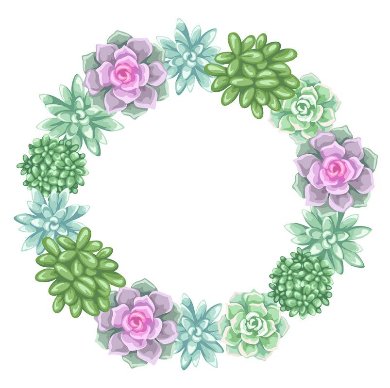 Beautiful Succulent Wreath clipart