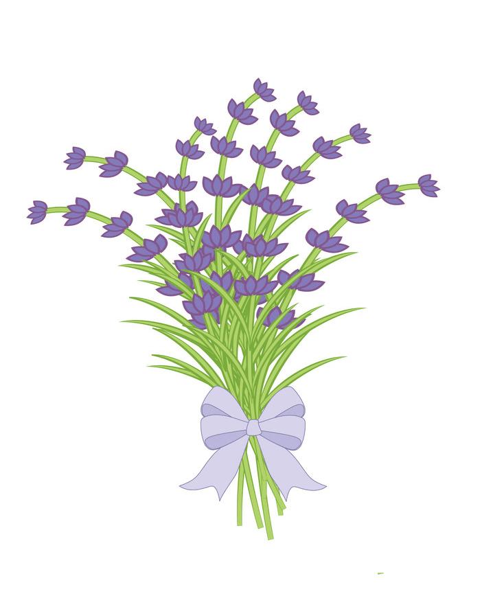 Bouquet Lavender Flowers clipart