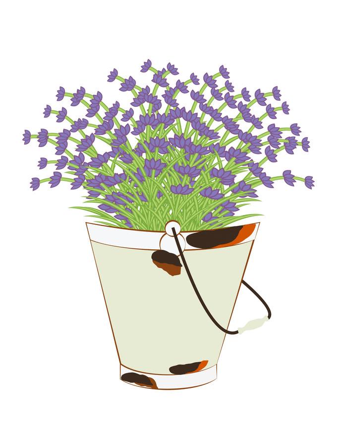 Bucket Lavender clipart