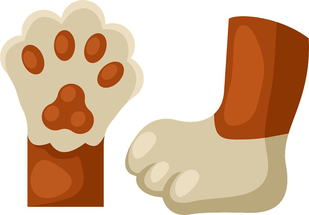 Cat Feet clipart