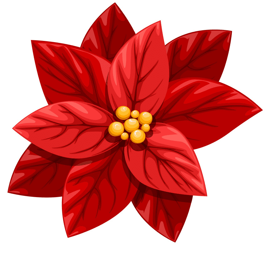 Clipart Red Poinsettia