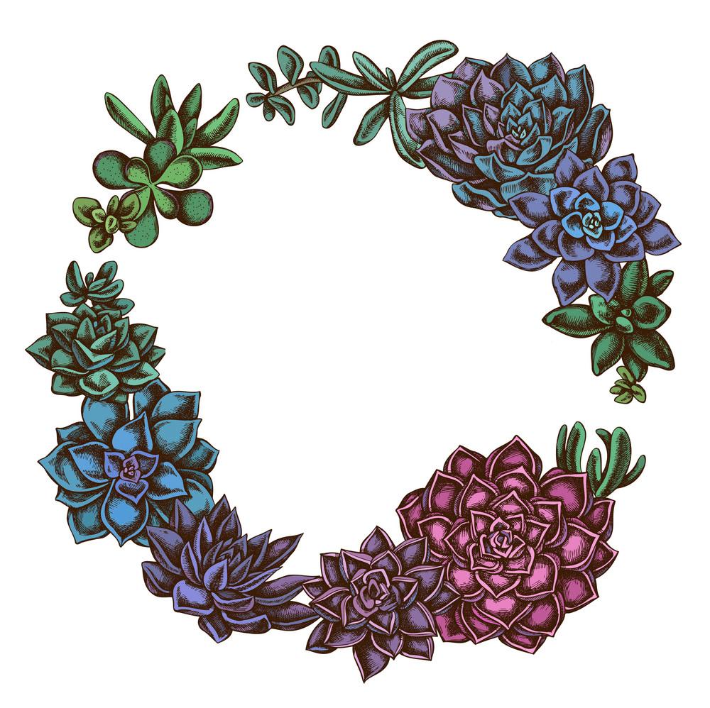 Download Succulent Wreath clipart