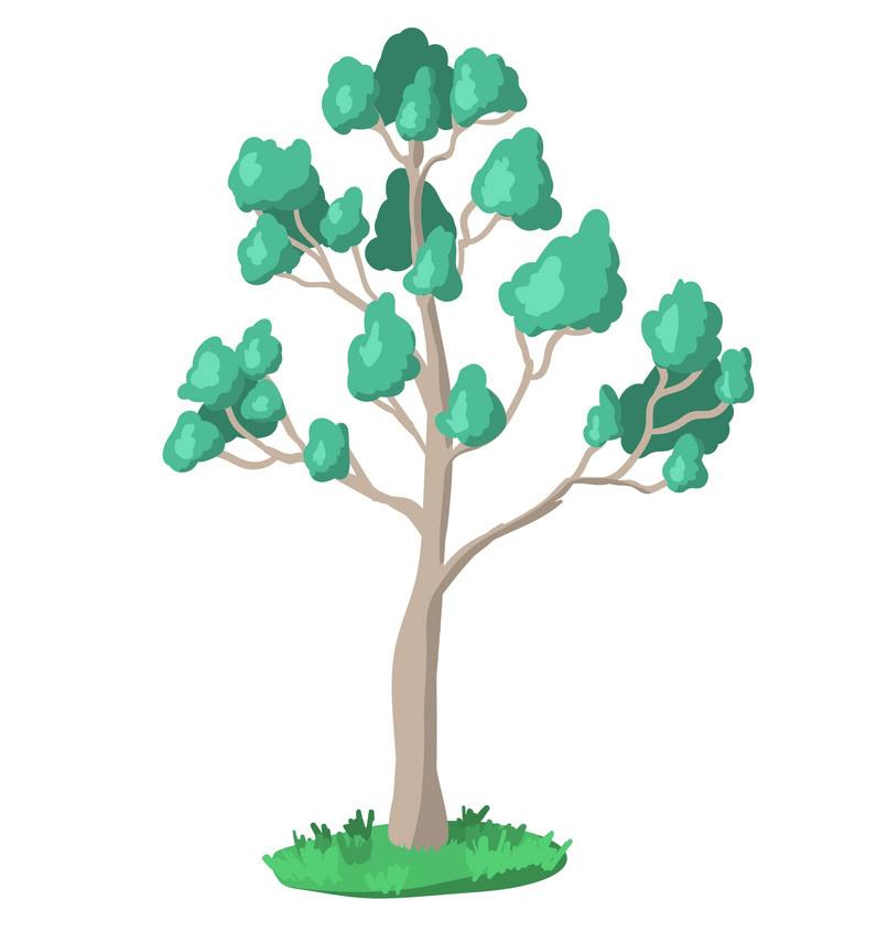 Eucalyptus Tree clipart