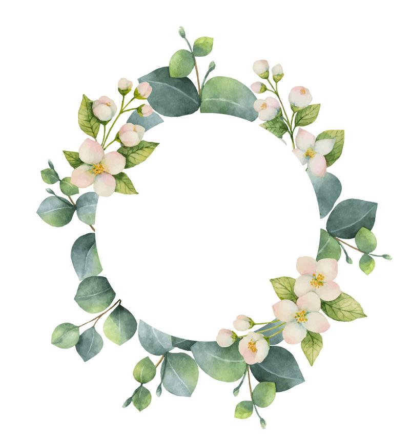 Eucalyptus Wreath clipart 3