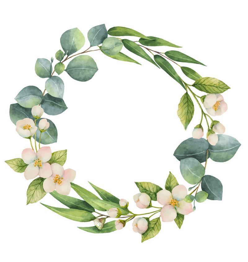 Eucalyptus Wreath clipart free