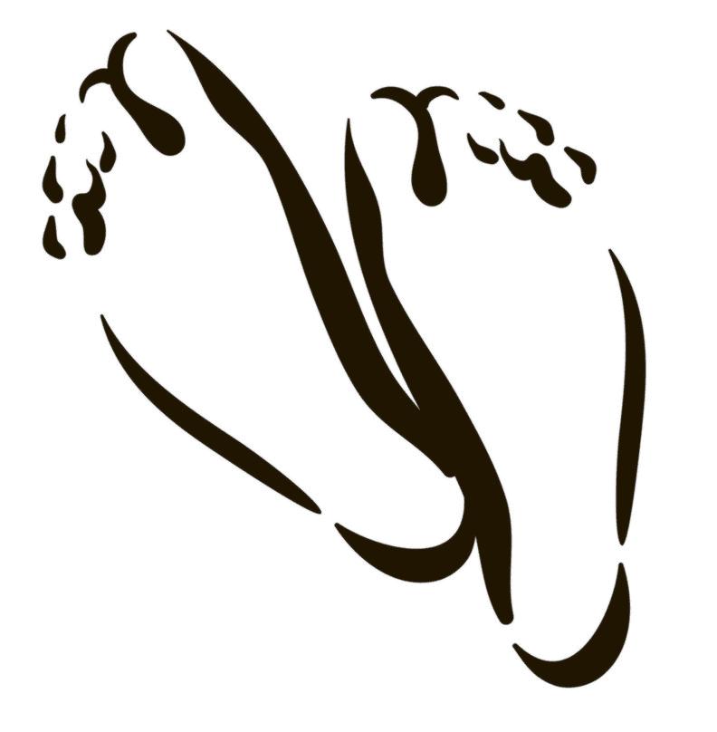 Feet clipart 11