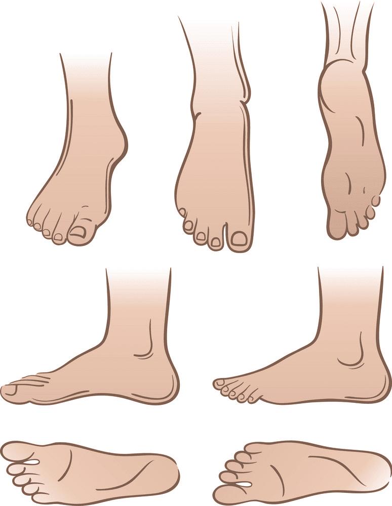 Feet clipart 15