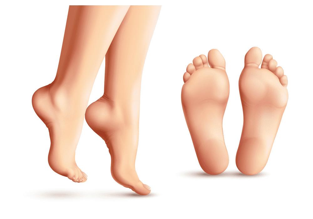 Feet clipart 8
