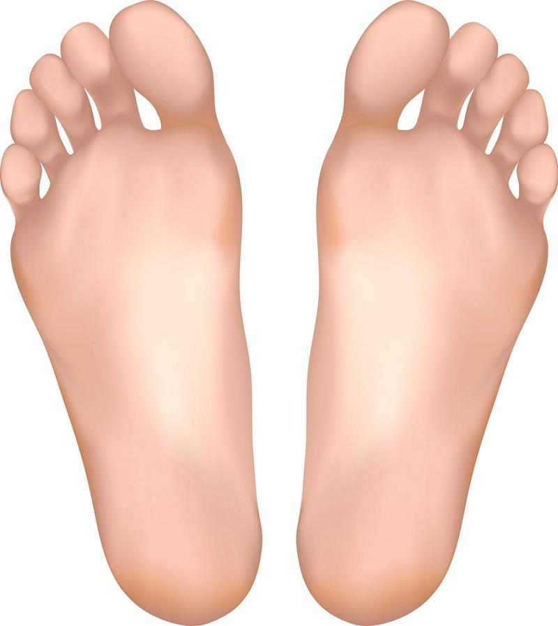 Feet clipart png