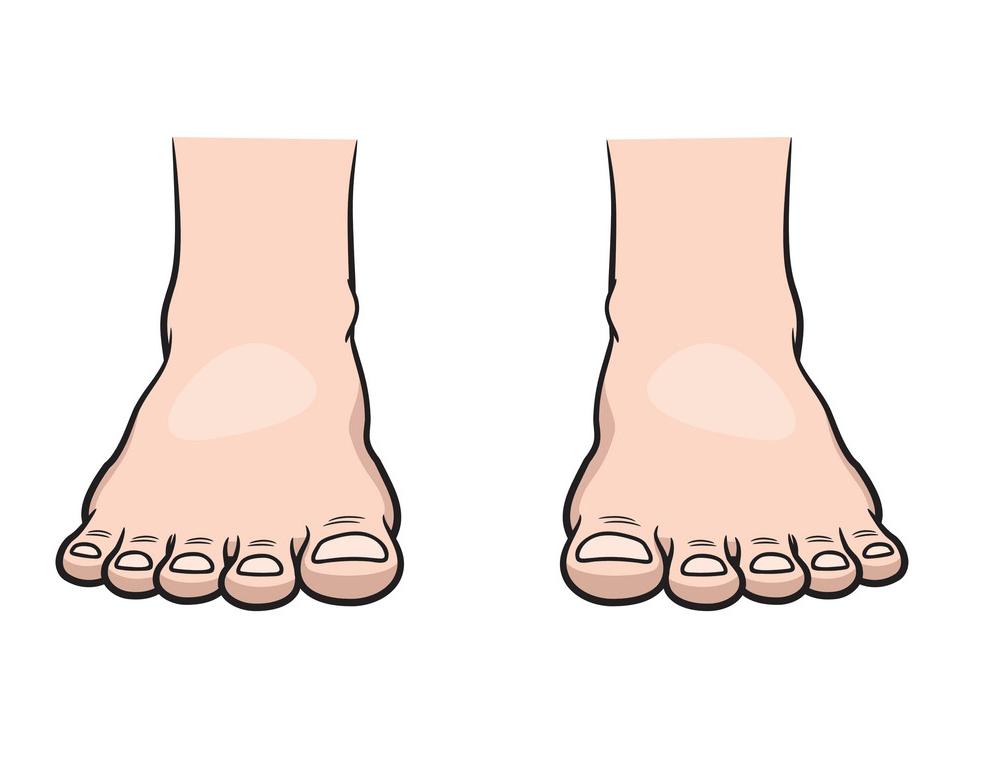Feet clipart transparent 2