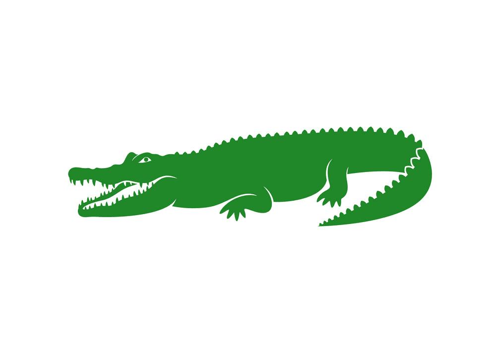 Free Alligator clipart 6