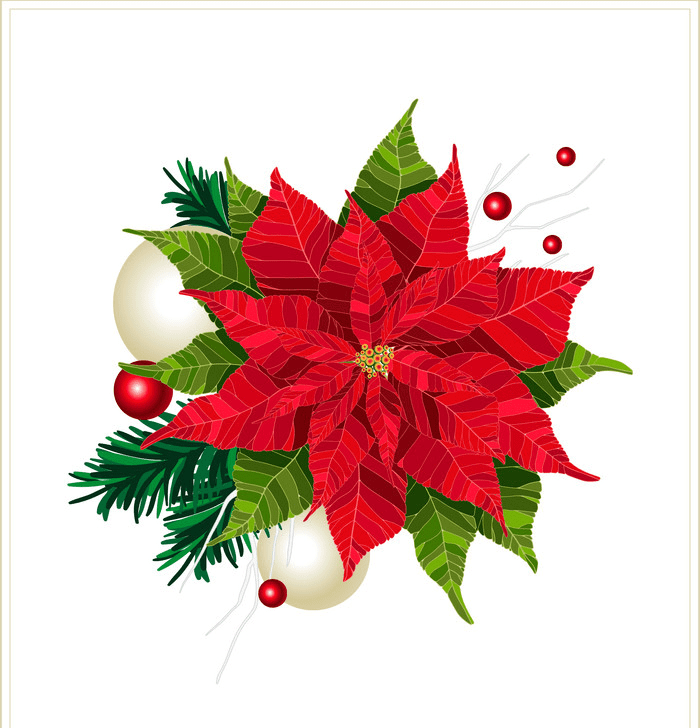 Free Christmas Poinsettia clipart png