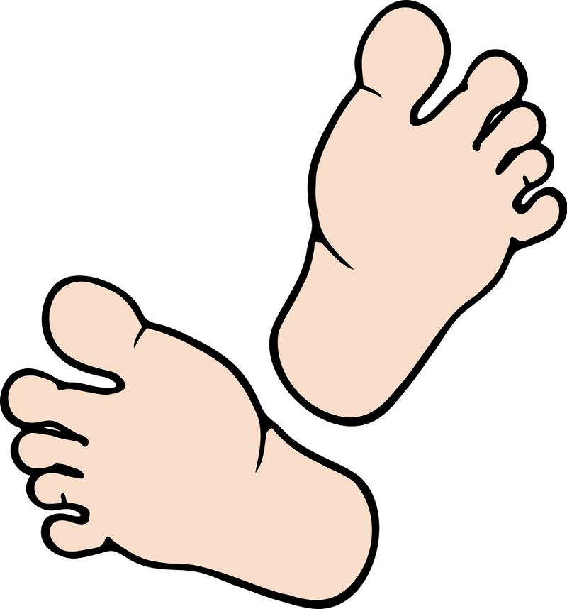 Free Feet clipart transparent