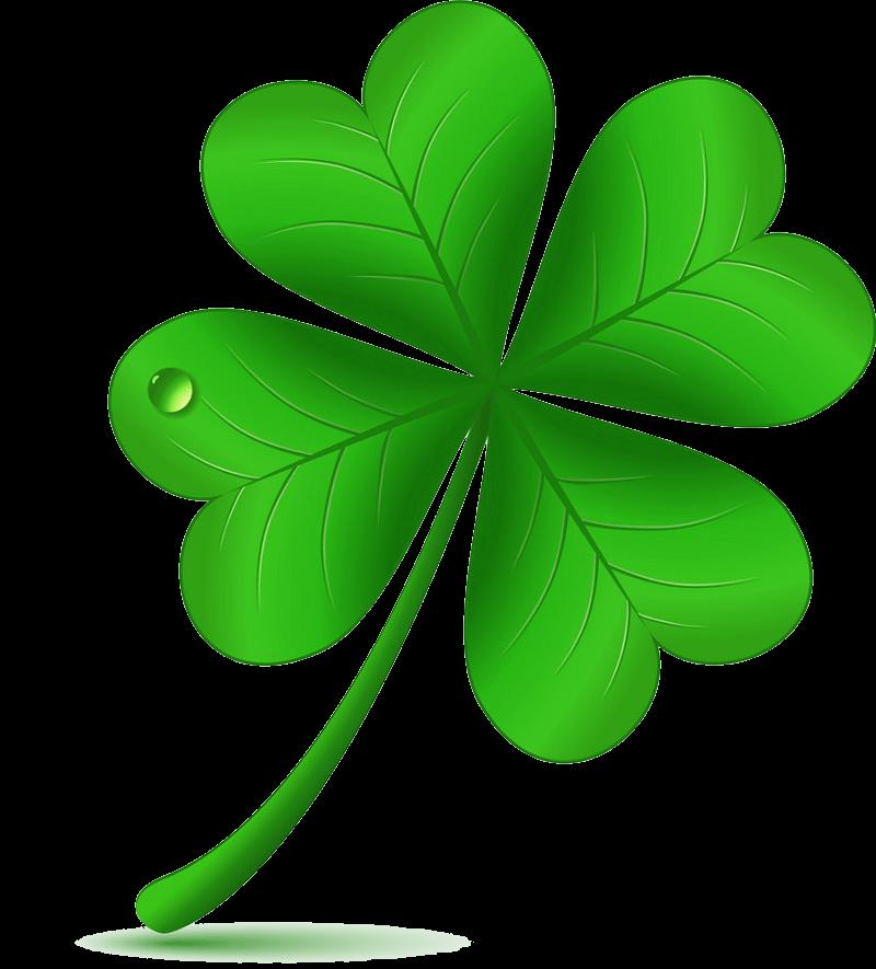 Free Four Leaf Clover clipart transparent