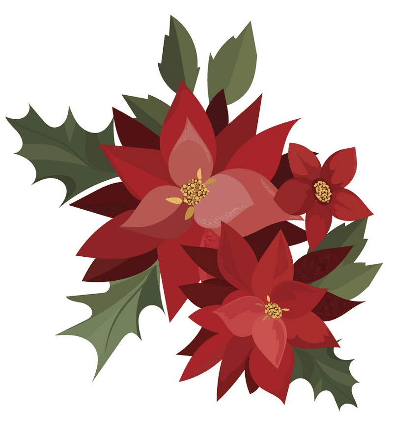 Free Poinsettia Flower clipart png