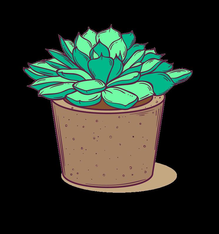 Free Succulent clipart transparent