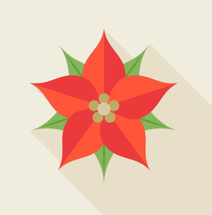 Icon Poinsettia clipart