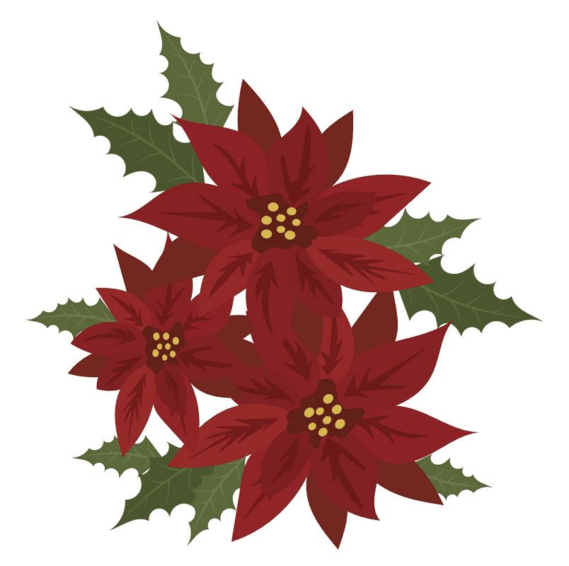 Poinsettia Flower clipart free