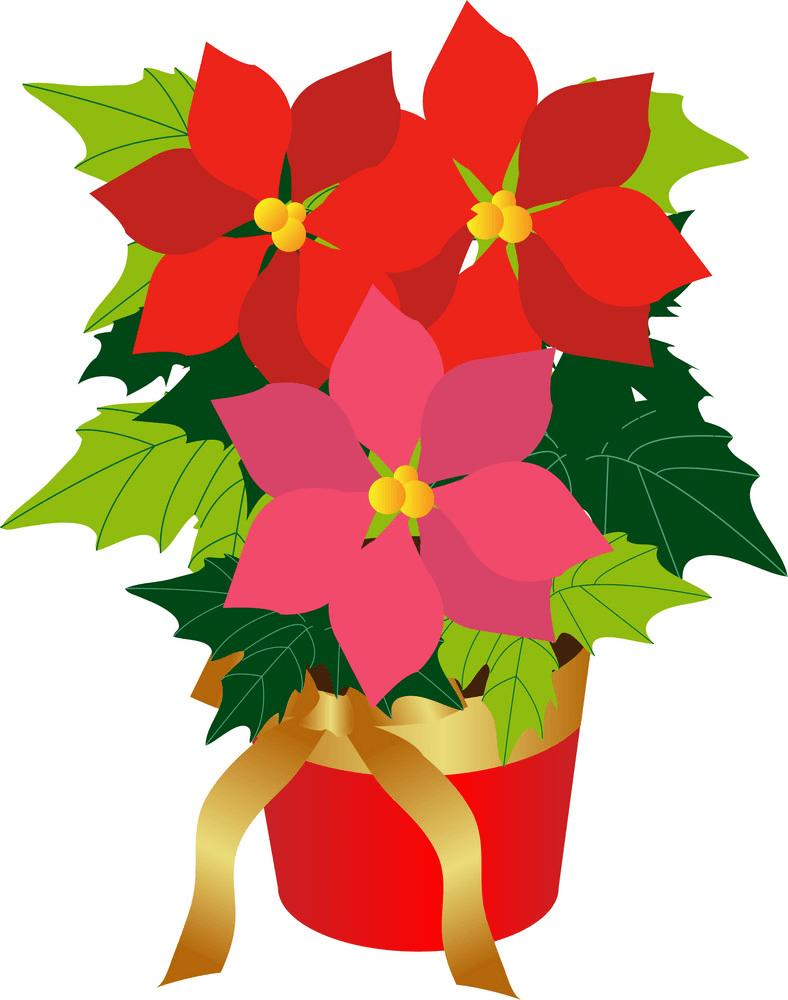 Poinsettia clipart 1