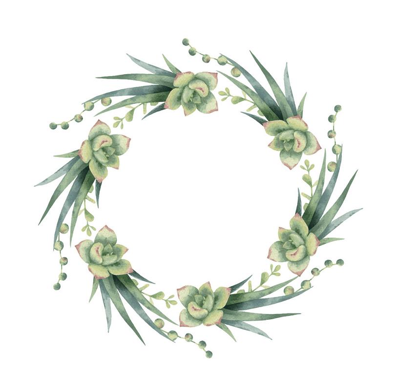 Succulent Wreath clipart png