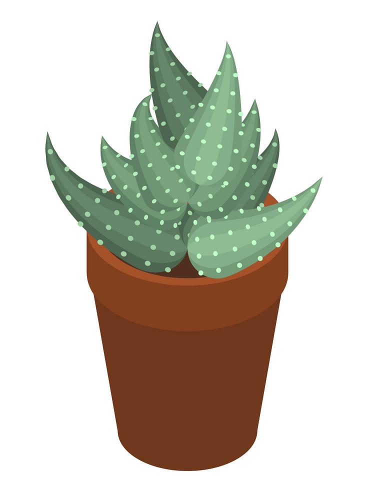 Succulent clipart 2