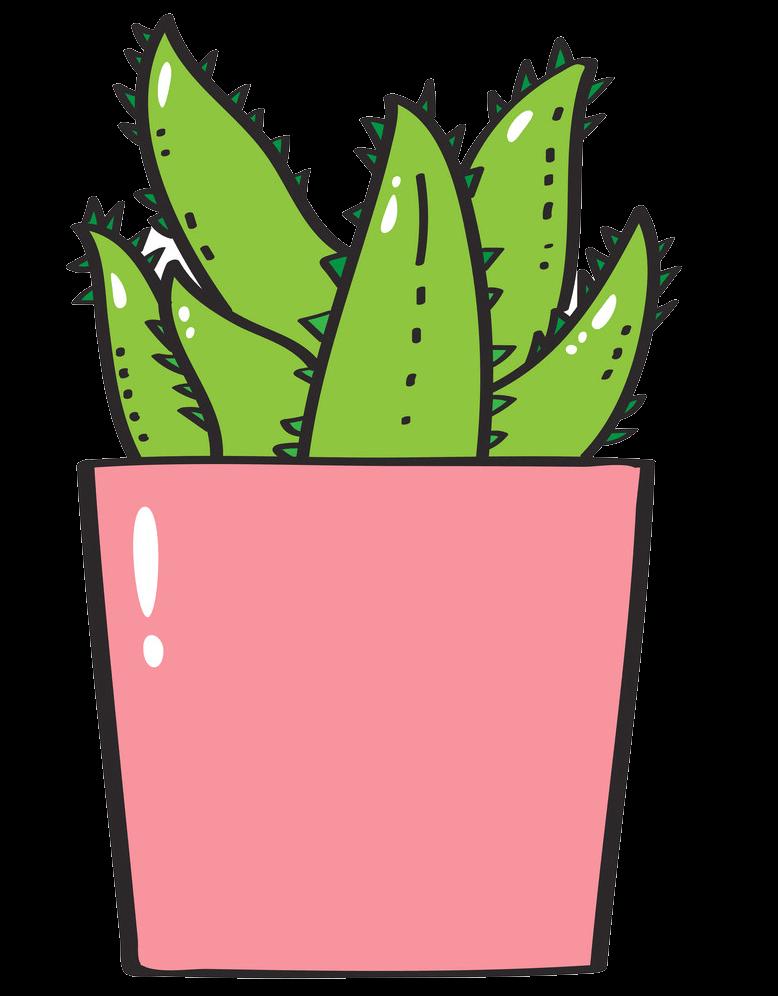 Succulent clipart transparent 2