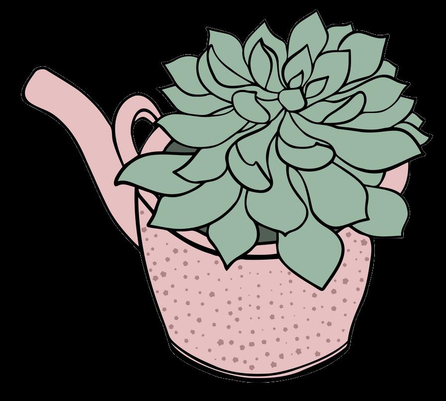 Succulent clipart transparent 4