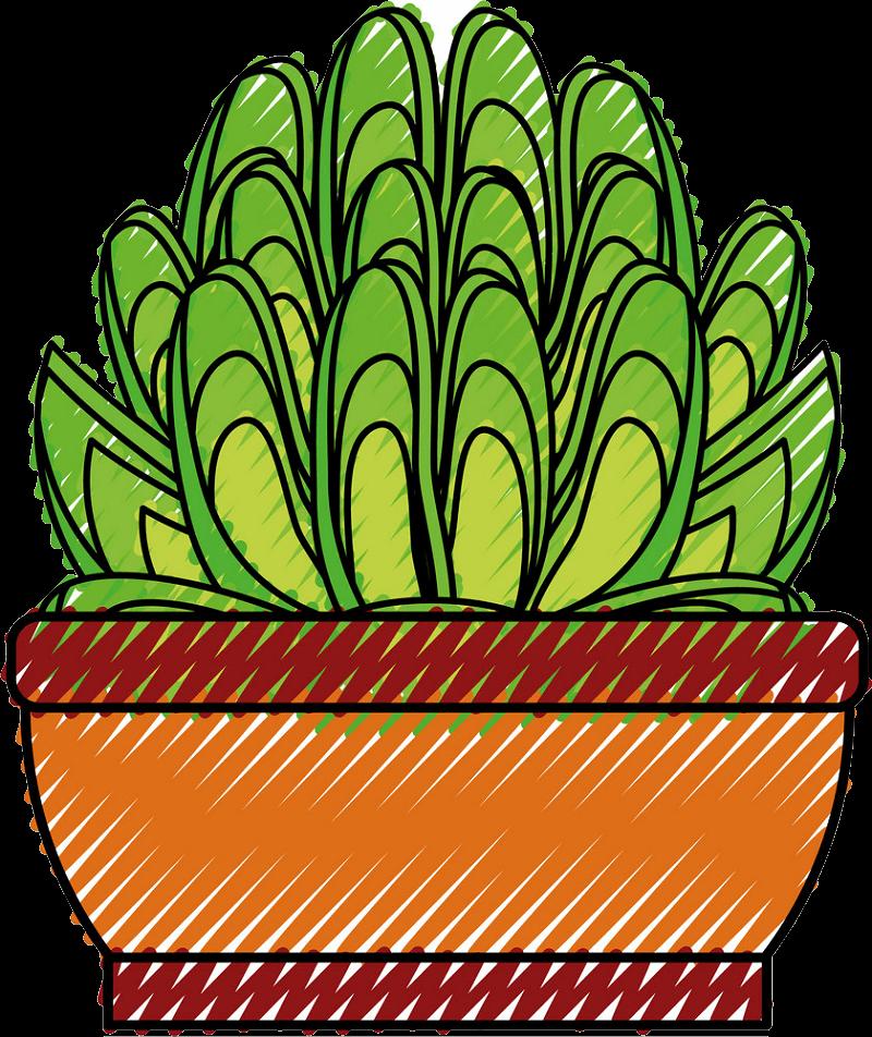 Succulent clipart transparent 5