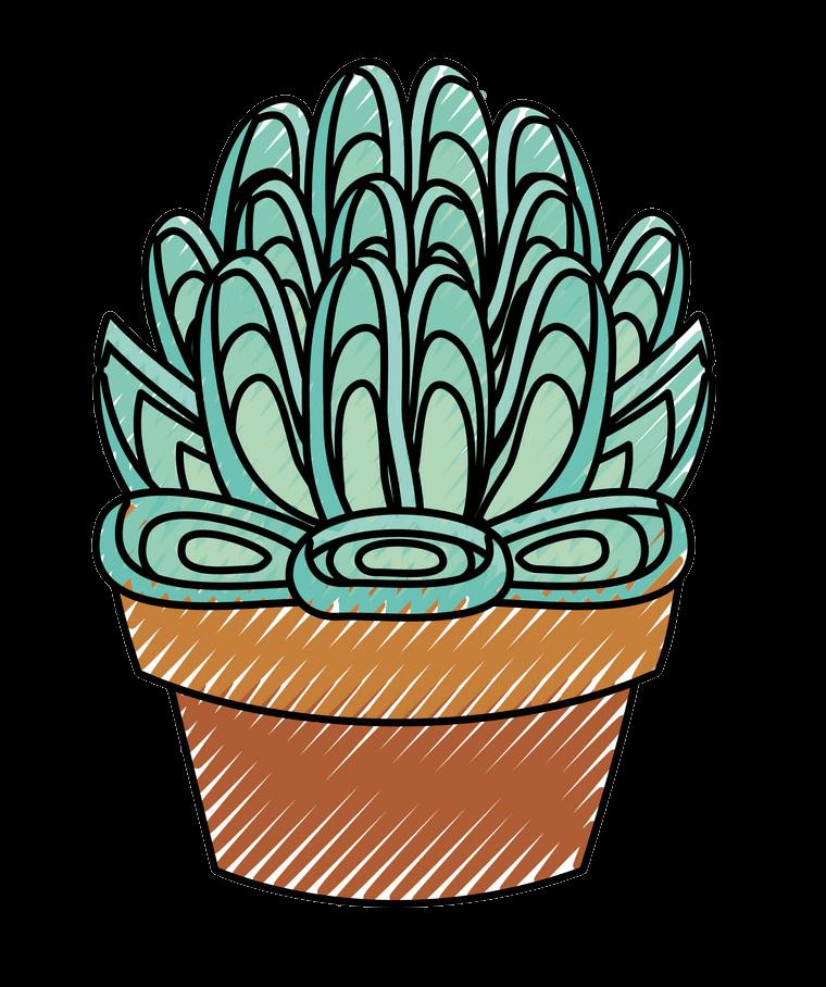 Succulent clipart transparent 6