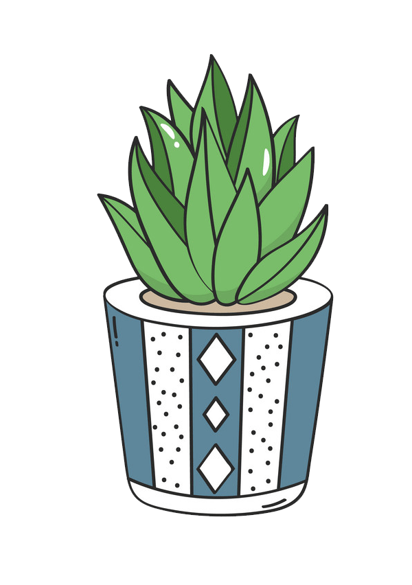 Succulent clipart transparent background