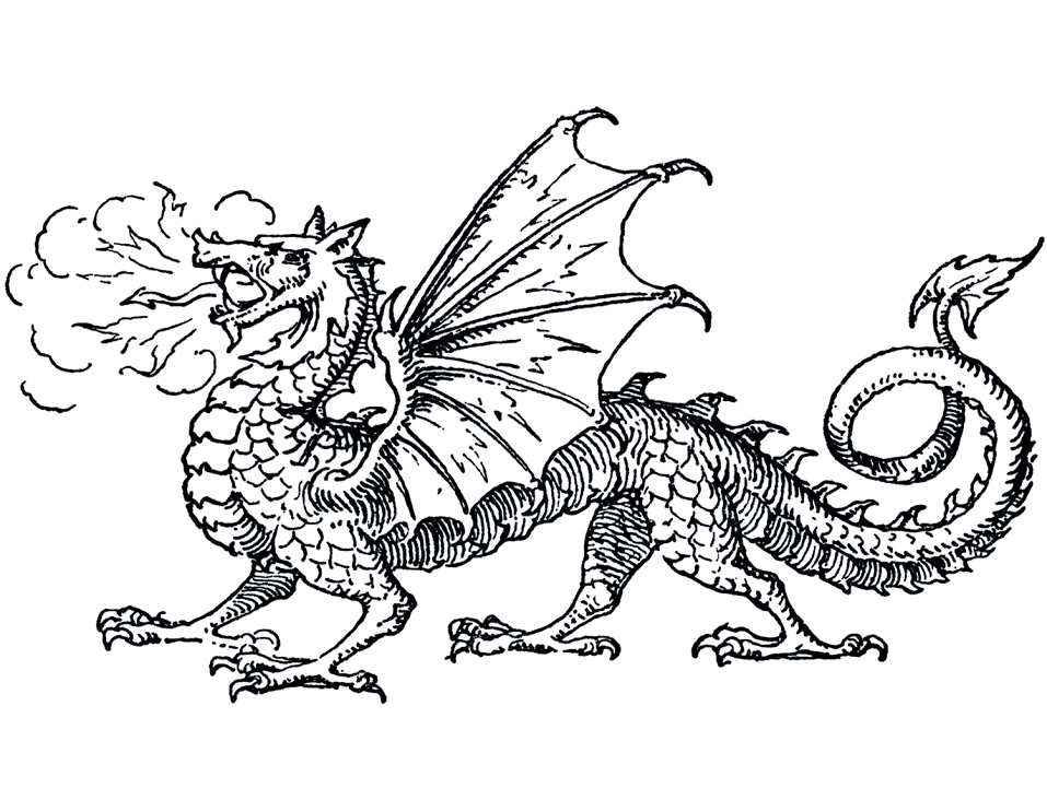 Dragon Black and White clipart png