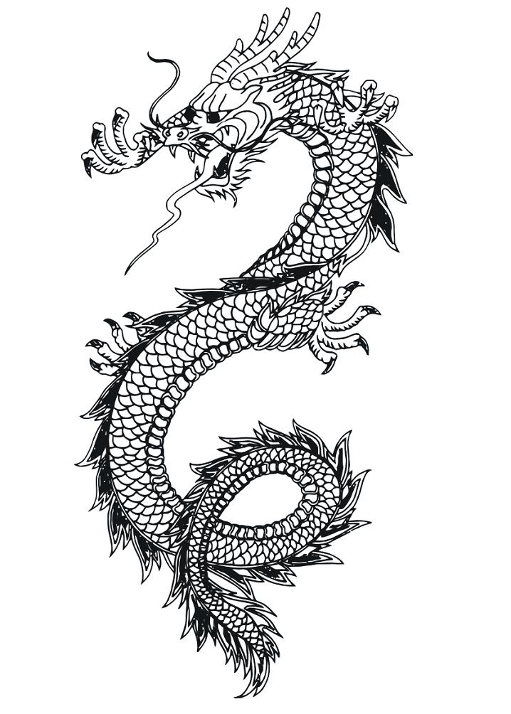 Dragon Clipart Black and White 1