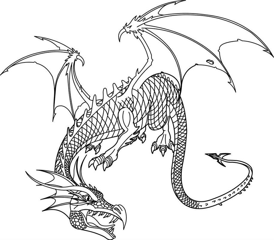 Dragon Clipart Black and White