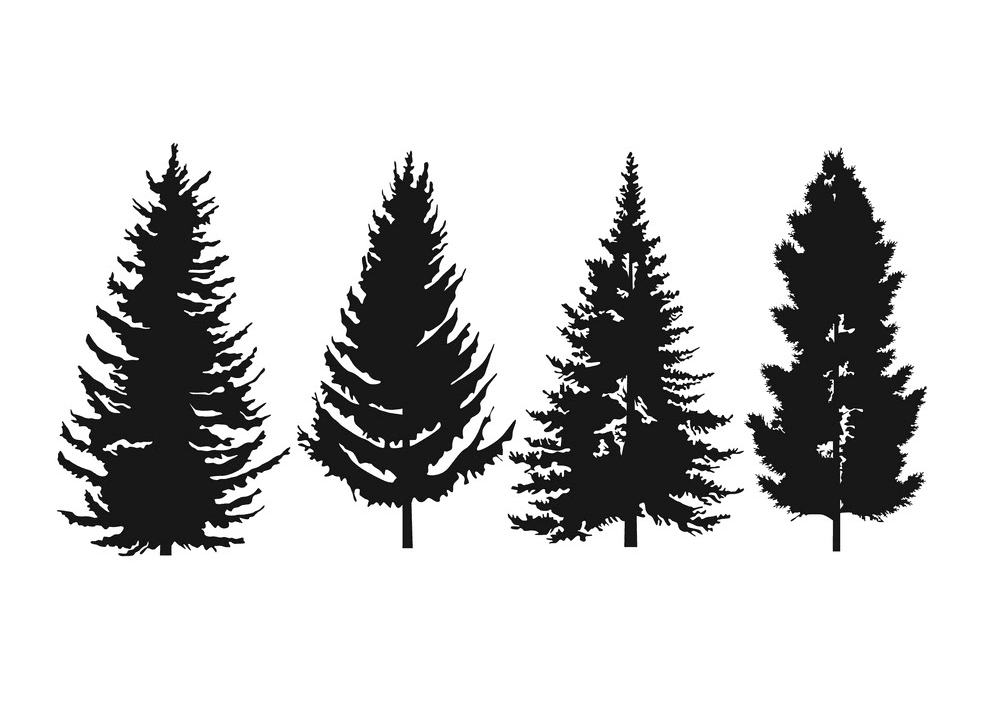 Pine Tree Silhouette clipart 4