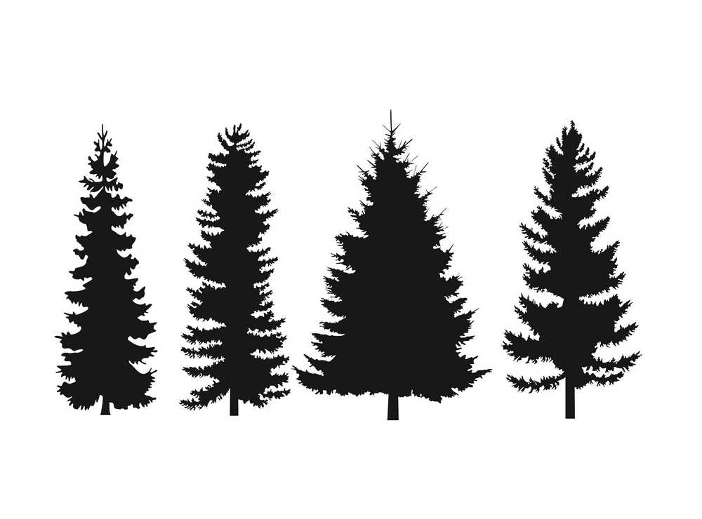 Pine Tree Silhouette clipart 5
