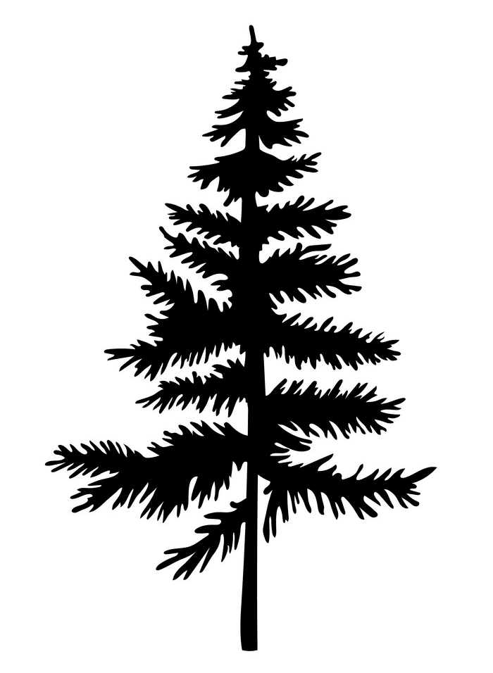 Pine Tree Silhouette clipart 6