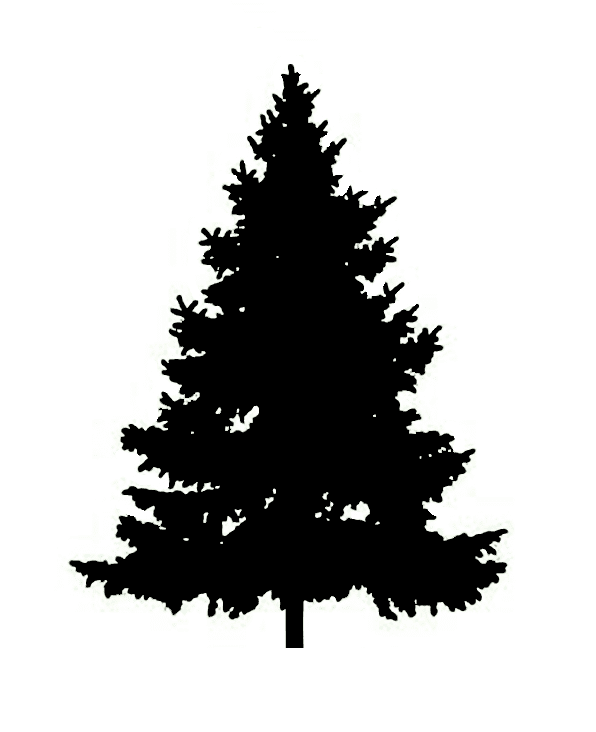 Pine Tree Silhouette clipart 9