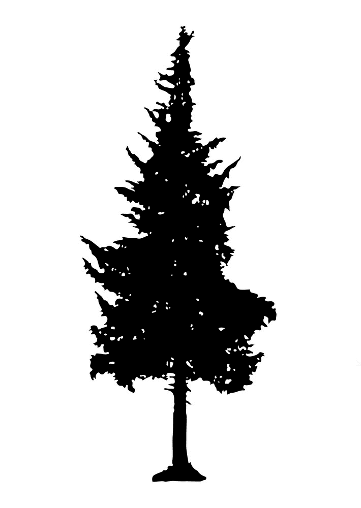 Pine Tree Silhouette clipart png
