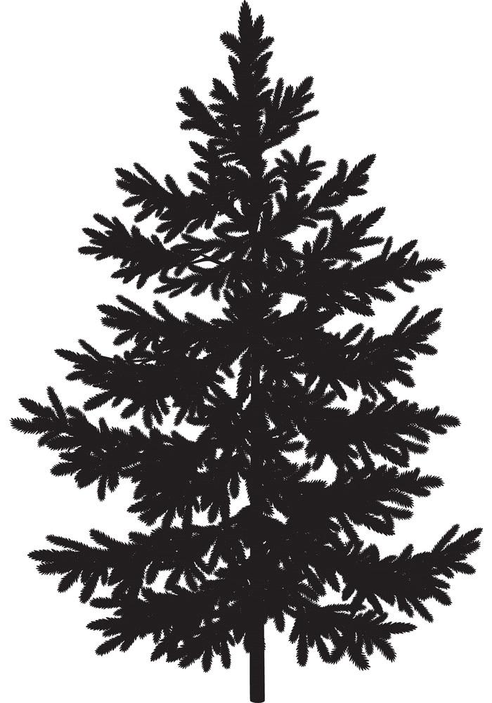Pine Tree Silhouette image