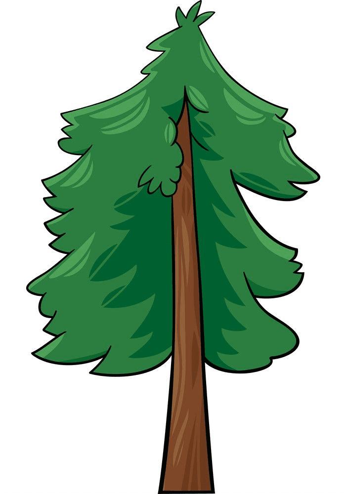 Pine Tree clipart 4